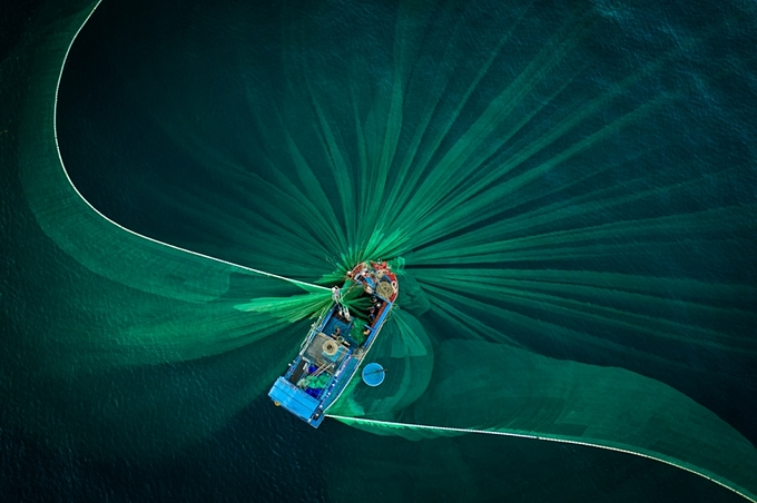 The photo taken by Thien Nguyen captures a local fisherman pulling out green nets on Hon Yen Islet in Phu Yen Province to harvest anchovies.