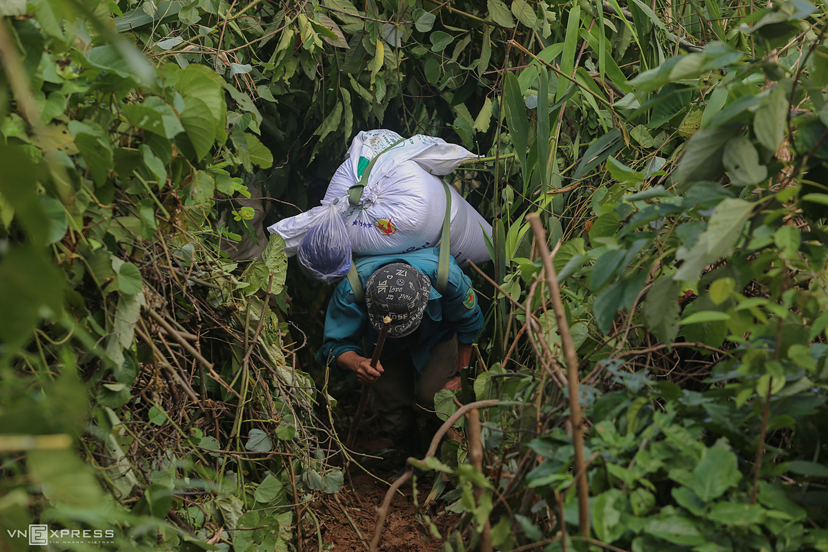 A man follows a small path through the forest with steep slopes. To go up the slope, people always have to bend down so that a bag of rice lies on their back to balance, while standing upright, they will be pulled back and unable to move, local man Ho Van Tu said.