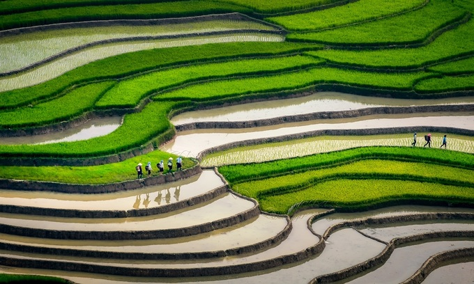 Mu Cang Chai named among world's most beautiful destinations
