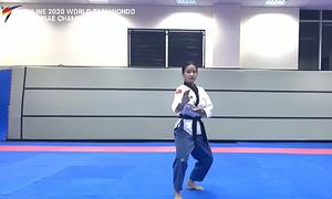 Vietnam wins 6 medals in Asian taekwondo championship held online