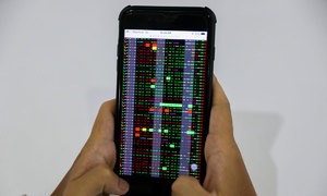 VN-Index hits one-year peak