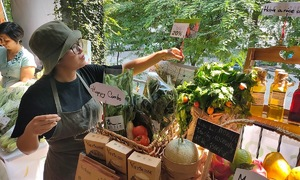 Organic farmers begin to reap the fruits of their work