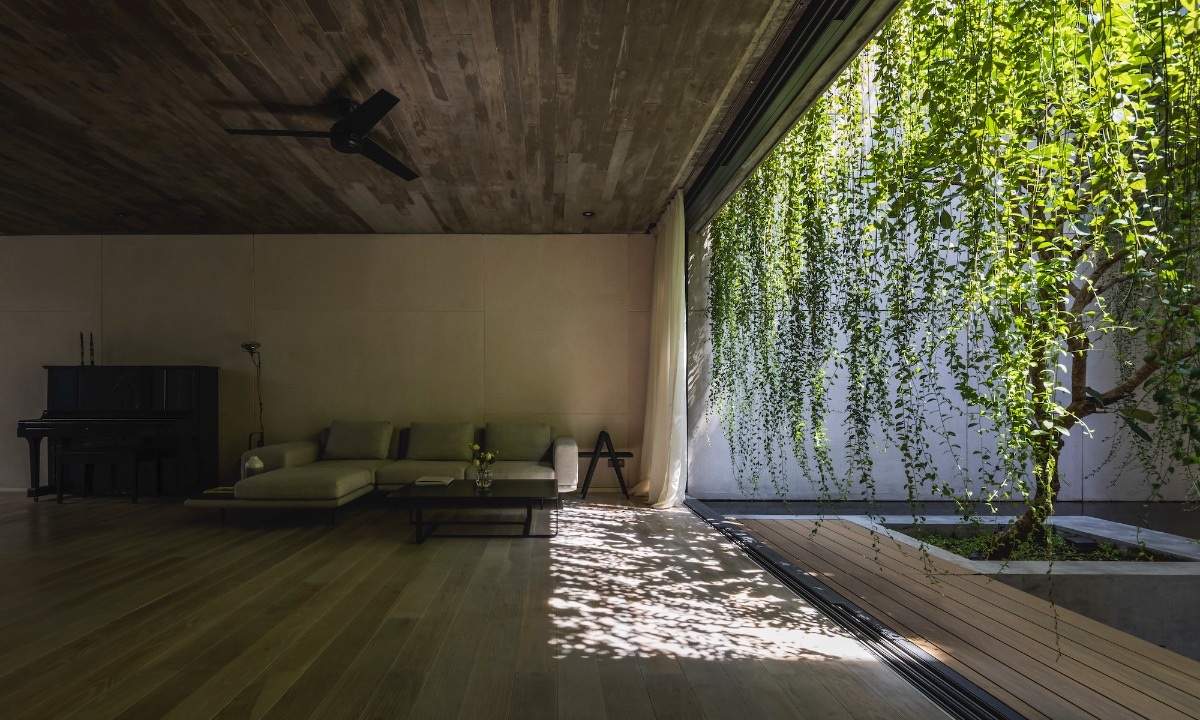 The minimalist living room has a natural curtain made of lianas, allowing sunlight to enter.