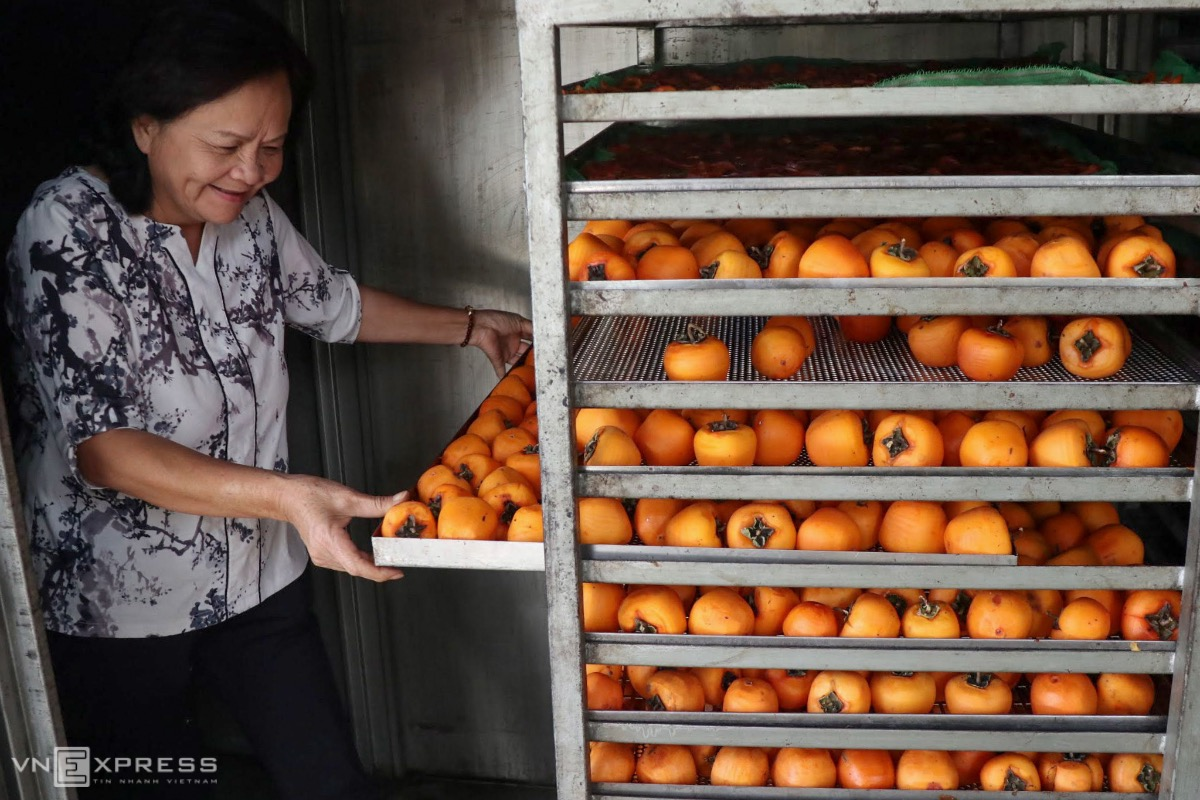 Peeled persimmons are dried in an oven in a short time to have a firm outer layer. According to Dang Thi Thu Van, an experienced worker, ripen persimmons are kept at 50-60 degrees Celsius for around 3 hours.