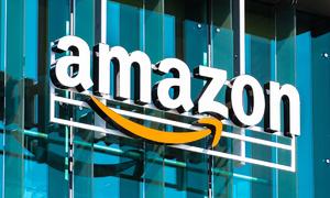 Amazon has over 100,000 Vietnamese sellers