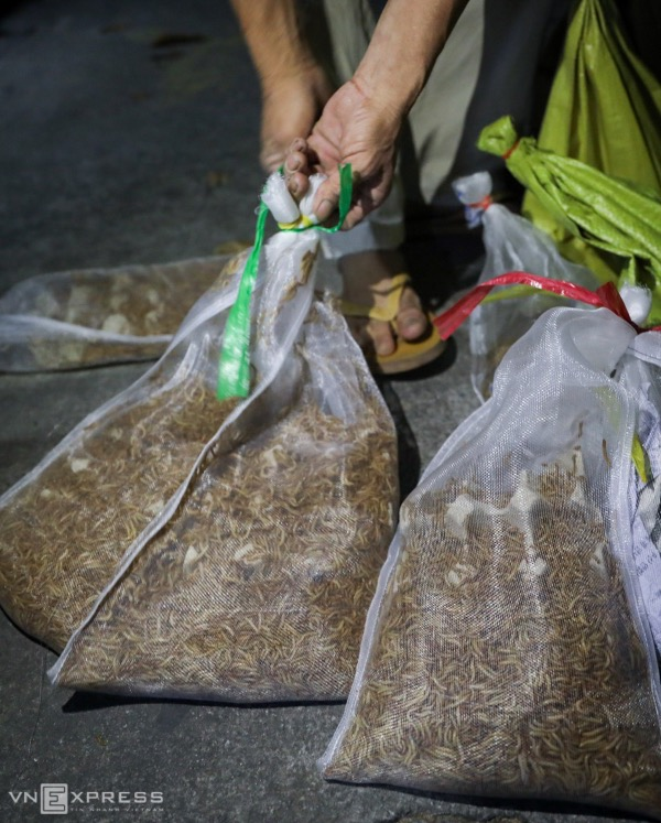 Each bag of superworms weighs 1kg and costs VND100,000 (US$4.3). They are used to feed pet birds and fishes.