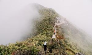 Bach Moc Luong Tu peak seduces trekkers