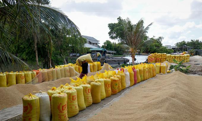 Mekong Delta economy struggles to grow