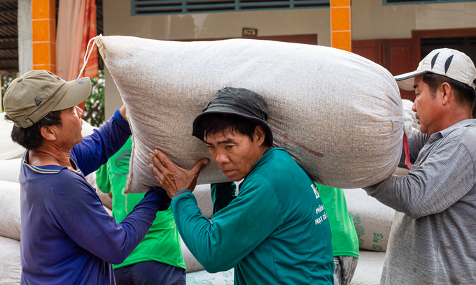 Shipping container crunch lifts Vietnam rice rates to 9-year peak