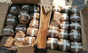 Over 665 kg of cannabis found in container from overseas