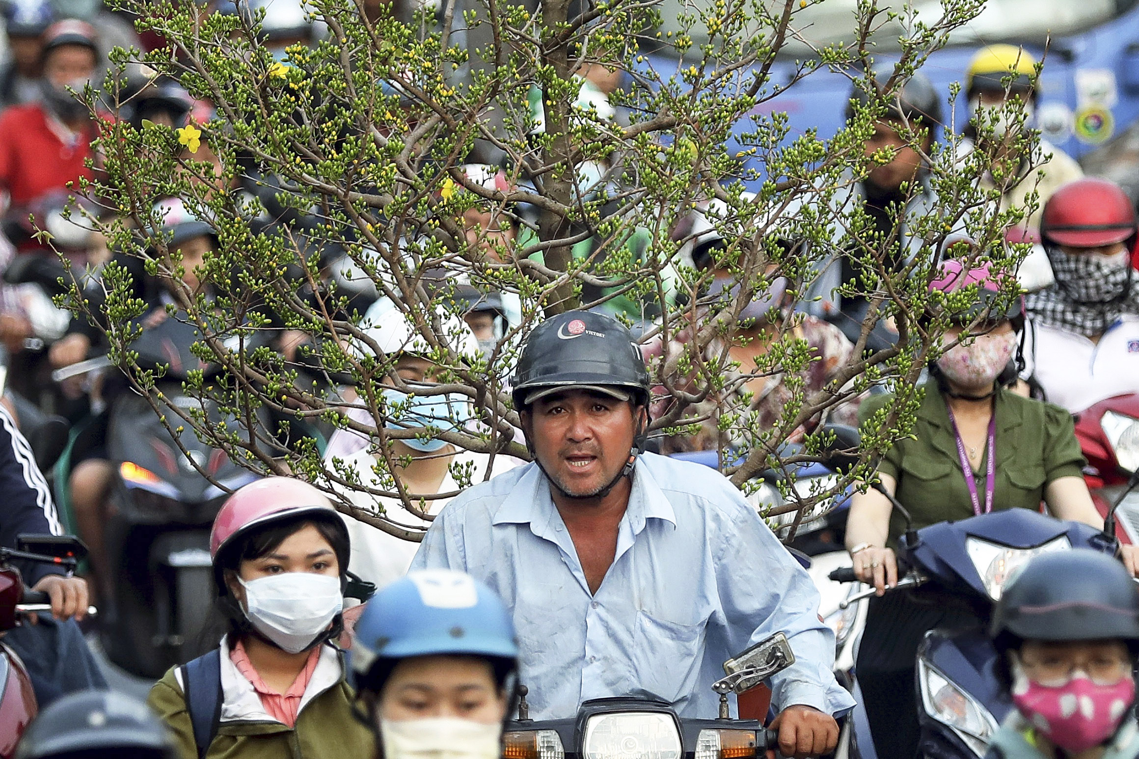 Vietnam's Leap Year leaps from normal to the new normal