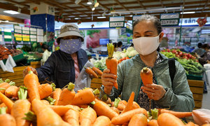 Vietnam targets 6.5 pct GDP growth next year