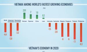 Vietnam's economy in 2020