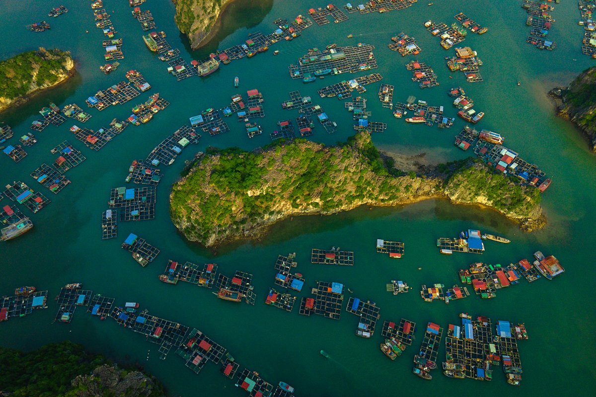Lan Ha Bay bares its heart with a rocky islet