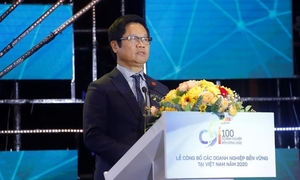 Vietnam ranks 49th in Sustainable Development Index