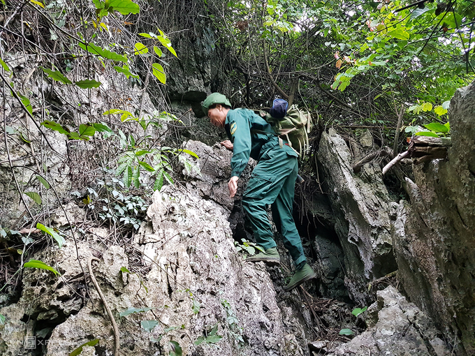 Hien climbs over a mountain during his patrol trip at Kim Bang forest in Ha Nam Province, December 21 2020. Photo by VnExpress/Tat Dinh.