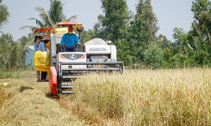 Vietnam buys Indian rice for first time in decades: industry officials