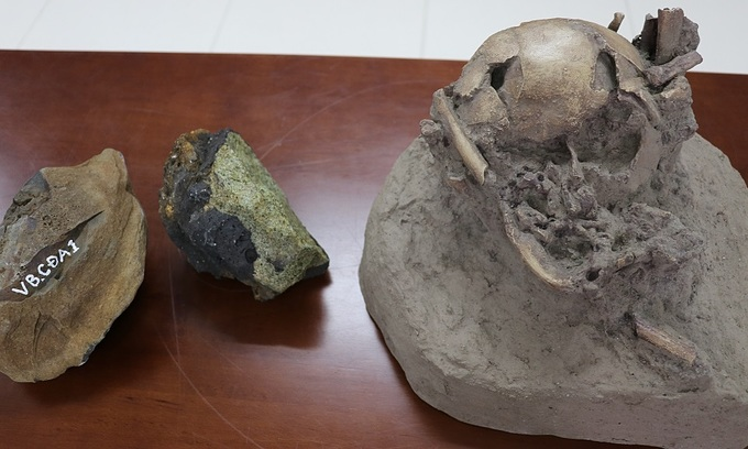 Vietnamese researchers extract DNA from ancient animal bone for first time