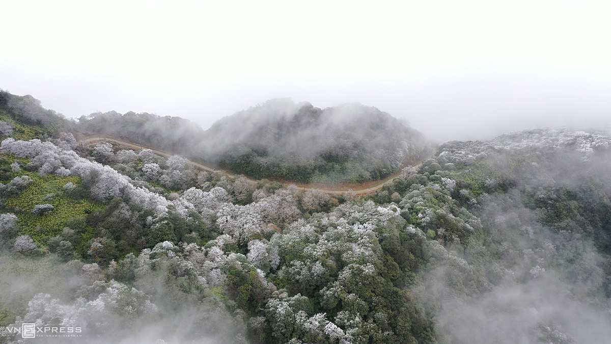 The icy scene in the Phia Oac Mountain is the result of a strong cold front that arrived in Vietnams northern mountainous region Thursday, and is expected to last until next Wednesday.