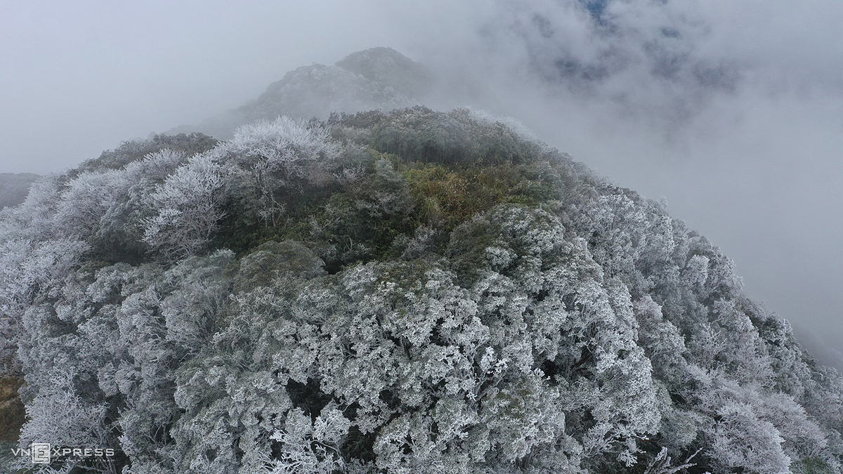 At a height of  1,931 meters above sea level, Phia Oac is considered the second roof of Cao Bang Province. Ha Cuong, the author of the photo collection, said that white frost covered on a large area of the mountain range. The branches and tops of grass in the early morning  seem to be covered with a new coat.