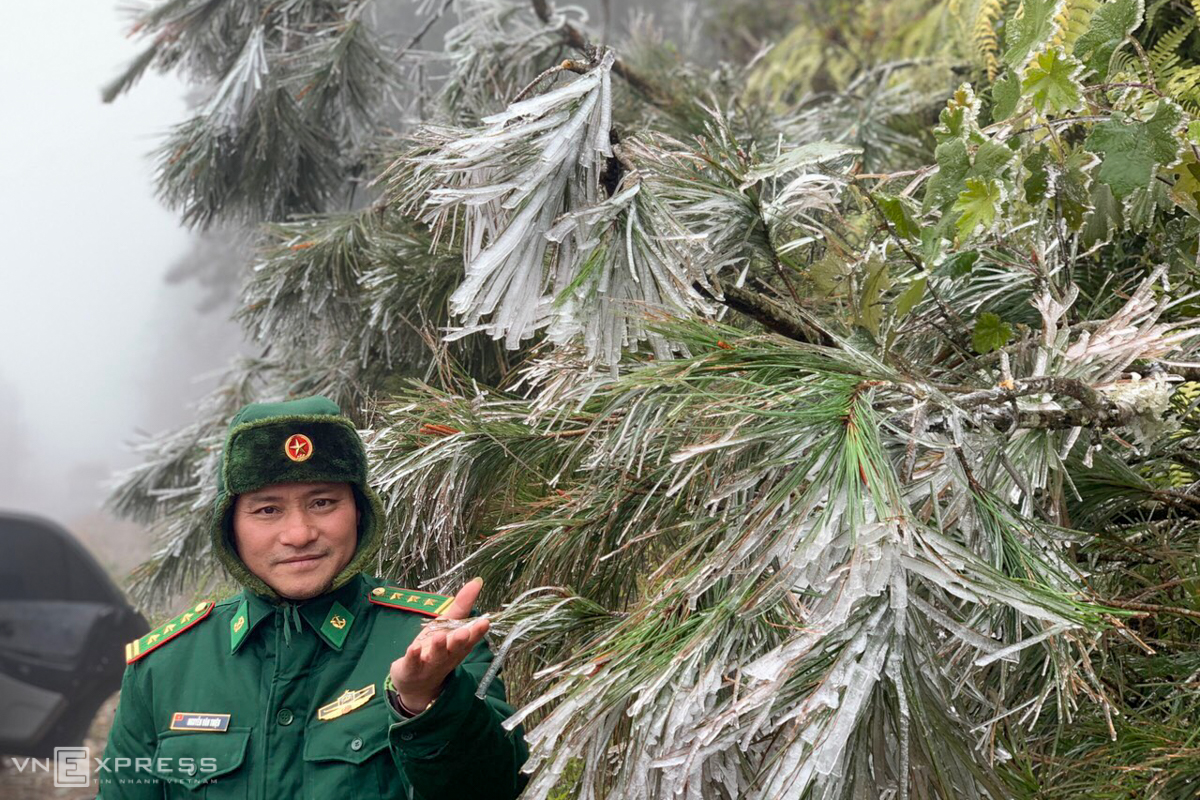 In the Northwest, frost also arrived in Y Ty Commune, Bat Xat District and Sa Pa Town of Lao Cai Province. According to local border guards, most trees along the patrolled border line are enveloped in a light layer of frost.
