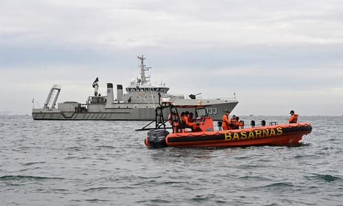 Vietnam condoles Indonesia plane crash tragedy