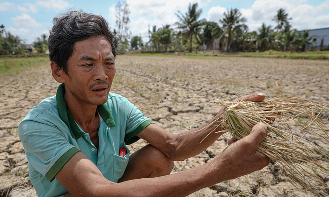 Mekong Delta saltwater intrusion not to be as severe as 2020