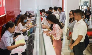 Stock market boom causes stampede as newbies hope to make a killing