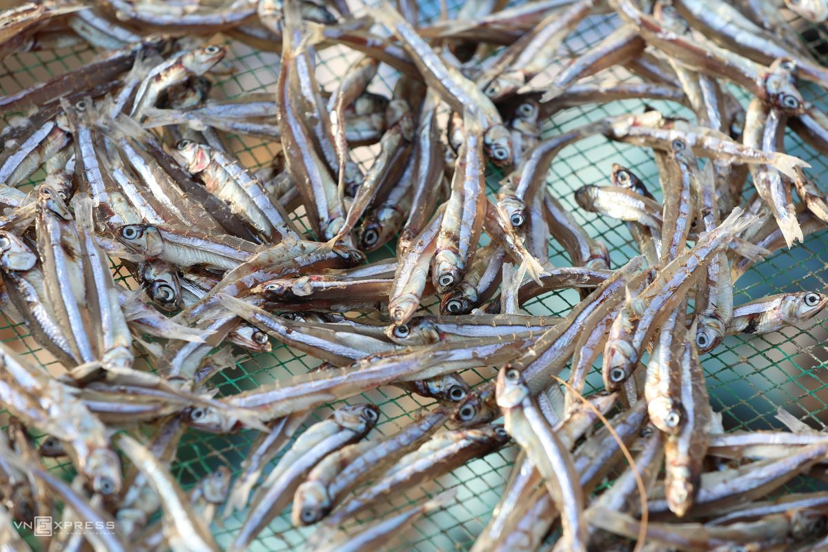 Two types of dried anchovies are made on the island – raw and boiled. Both can be served as ready-to-eat snacks.