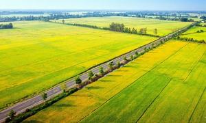 Mekong Delta province seeks $195 mln road expansion