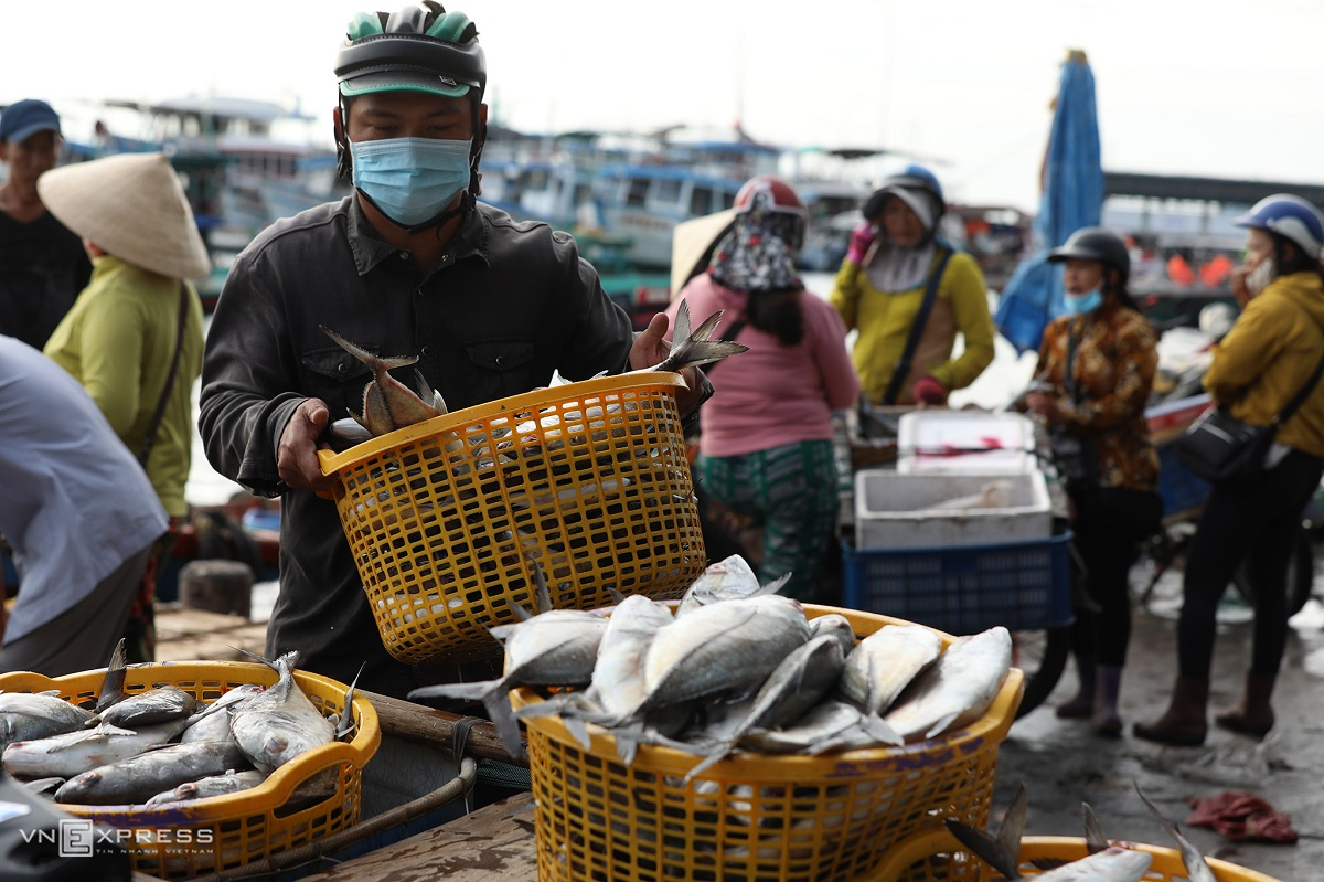 Right after settling the deal, fish are quickly handled to reach customers as soon as possible because fish stored in ice for a long time could be easily spoilt in normal temperatures, Nguyen Tuan, a deliveryman for restaurants in An Thoi said.