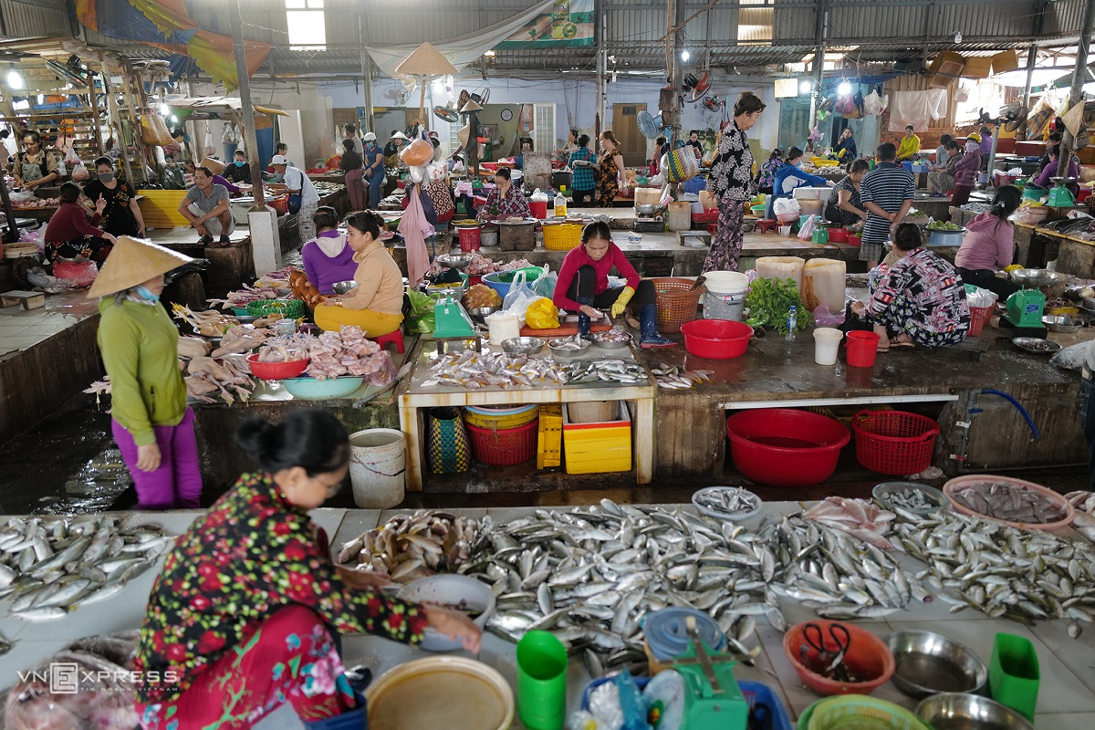 An Thoi fish market is crammed with fishmongers at 7:30 a.m.  This is the second most crowded fish market in Phu Quoc City. Thirty kilometers from here is the most crowded one, Duong Dong Market.