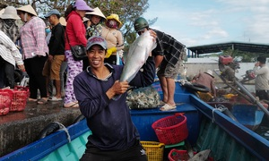 Busy year-end fish market at Phu Quoc port