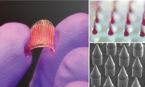 Vietnamese scientist develops skin patch vaccine technology