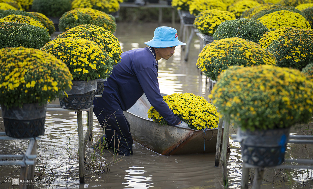 For years now, residents have also taken advantage of their flower growing tradition to develop local tourism. Due to the resurgence of the latest Covid-19 outbreak which emerged in northern Vietnam last week before spreading to at least 10 localities, tourists are limited to visit the flower village at this time to prevent the risk of contracting the virus.