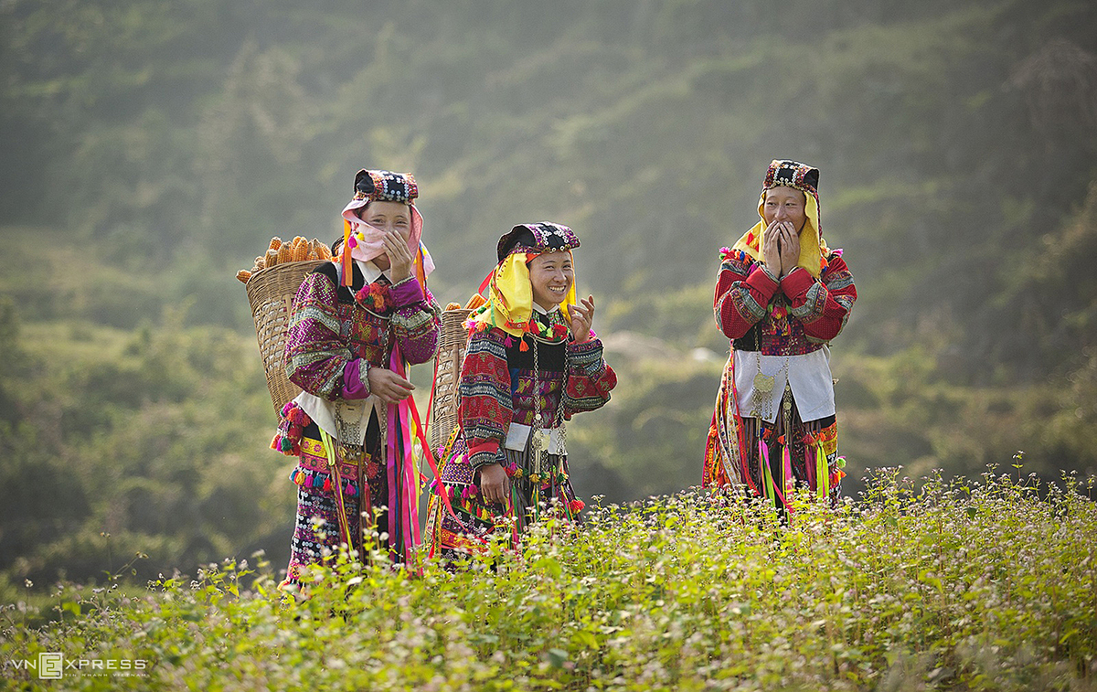 Women from the Lo Lo ethnic minority group laugh amid a field of buckwheat flowers along the hillside of Lung Cu Commune in Dong Vanm the capital town of Ha Giang Province. Year-end is the time when ethnic communities in the northern highlands harvest buckwheat, a type of grain commonly used to make cakes and wine.