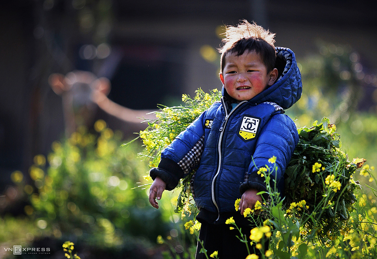 Thong shared that the photo that left a lot of emotions for him when he worked was a boys cheeks next to a cluster of yellow rapeseed flowers at Sung La, located on Highway 4C, connecting Yen Minh with Dong Van Plateau in Ha Giang.