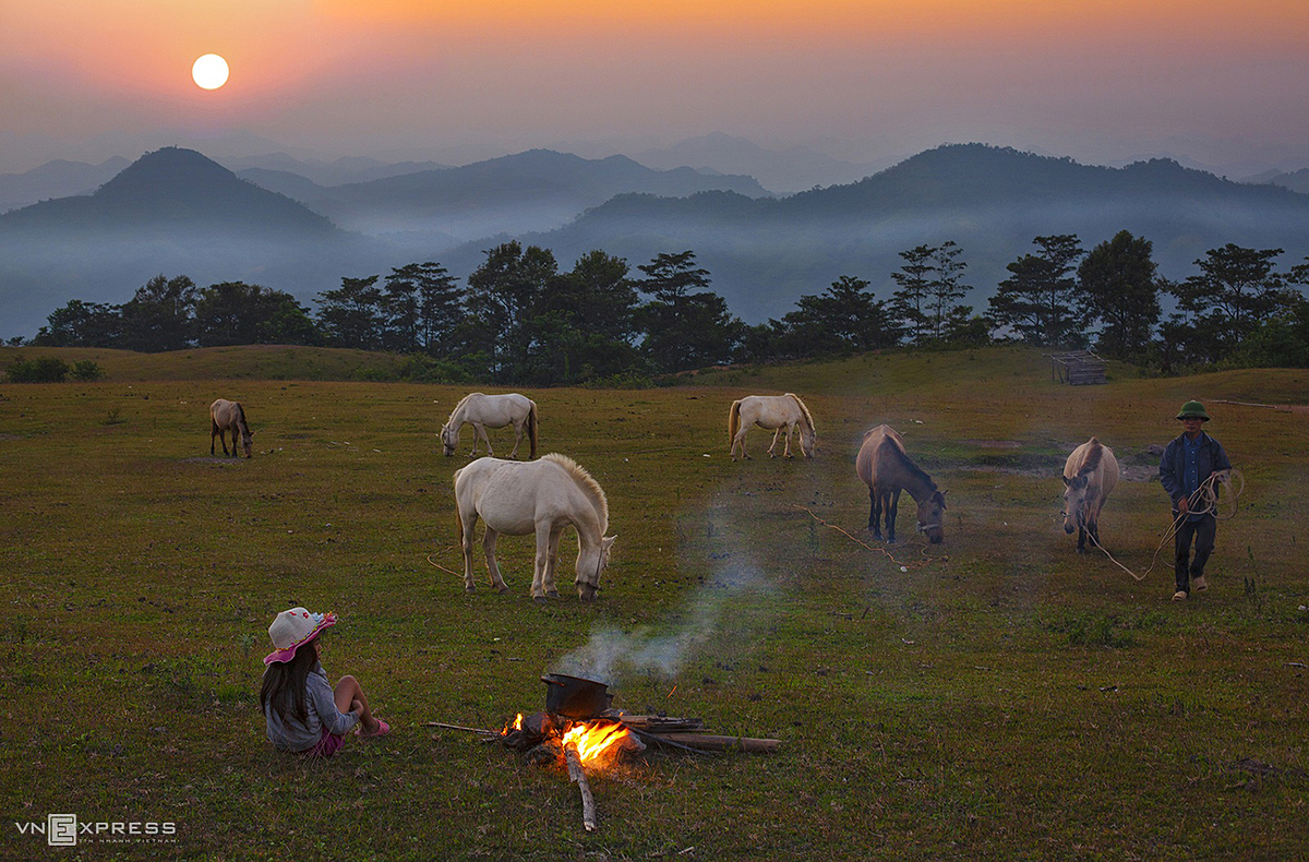 A peaceful afternoon with herds of horses on the prairie Huu Lung Commune in Lang Son Province.