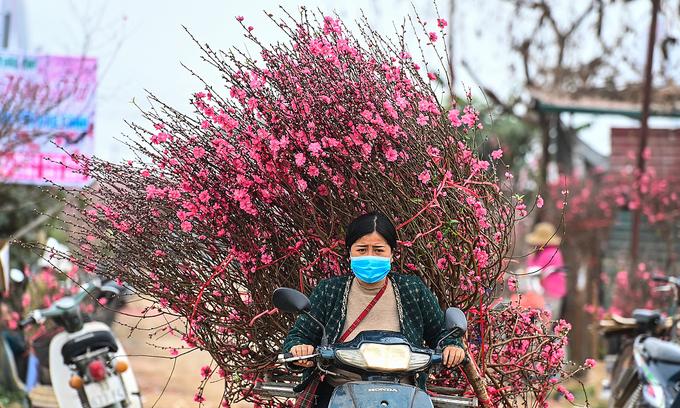 Stay home, limit Tet travel, Hanoi tells residents