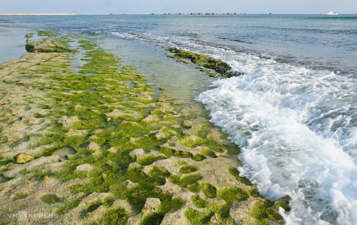 Ly Son Island dons its smooth green moss garb
