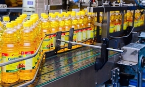 Food company reports 300 pct profit rise