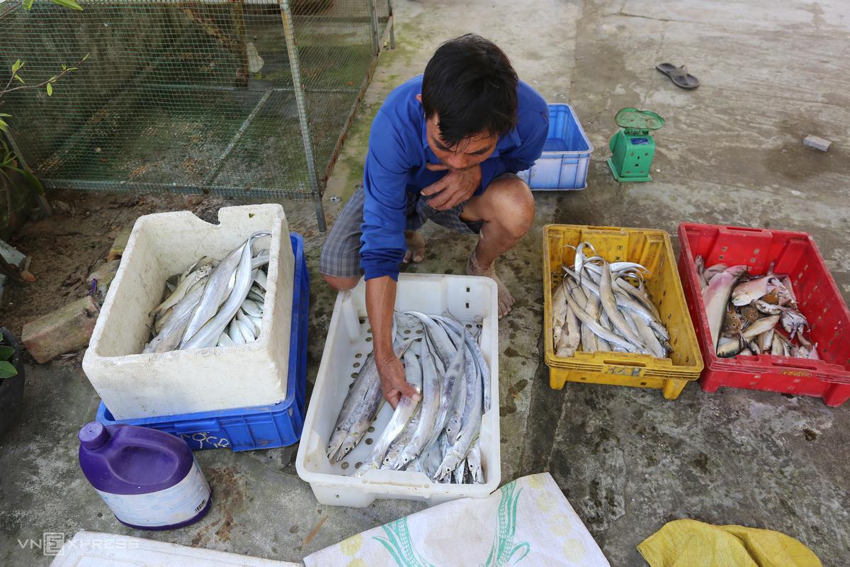 Central Vietnam commune enters beltfish season