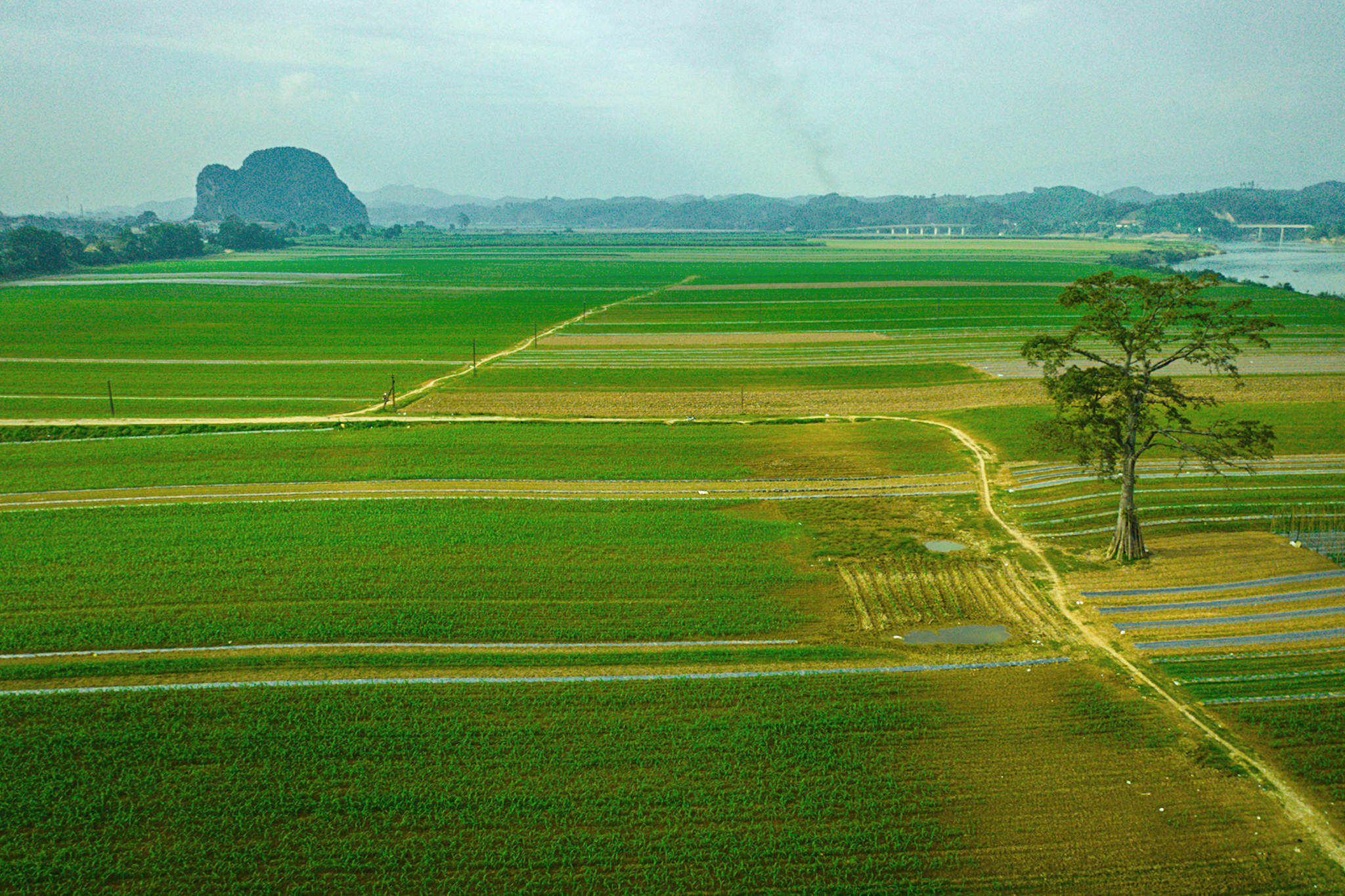 A tour around emerald-green Nghe An, Vietnam's largest province