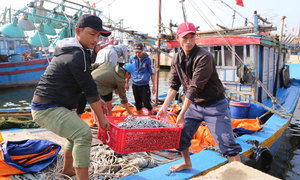 Seafood exports edge up