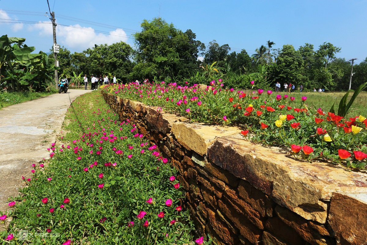 In 2017, Quang Nam People's Committee approved Tien Phuoc's ecotourism development, with plain concrete roads now decorated with stone fences and colorful petite flowers.