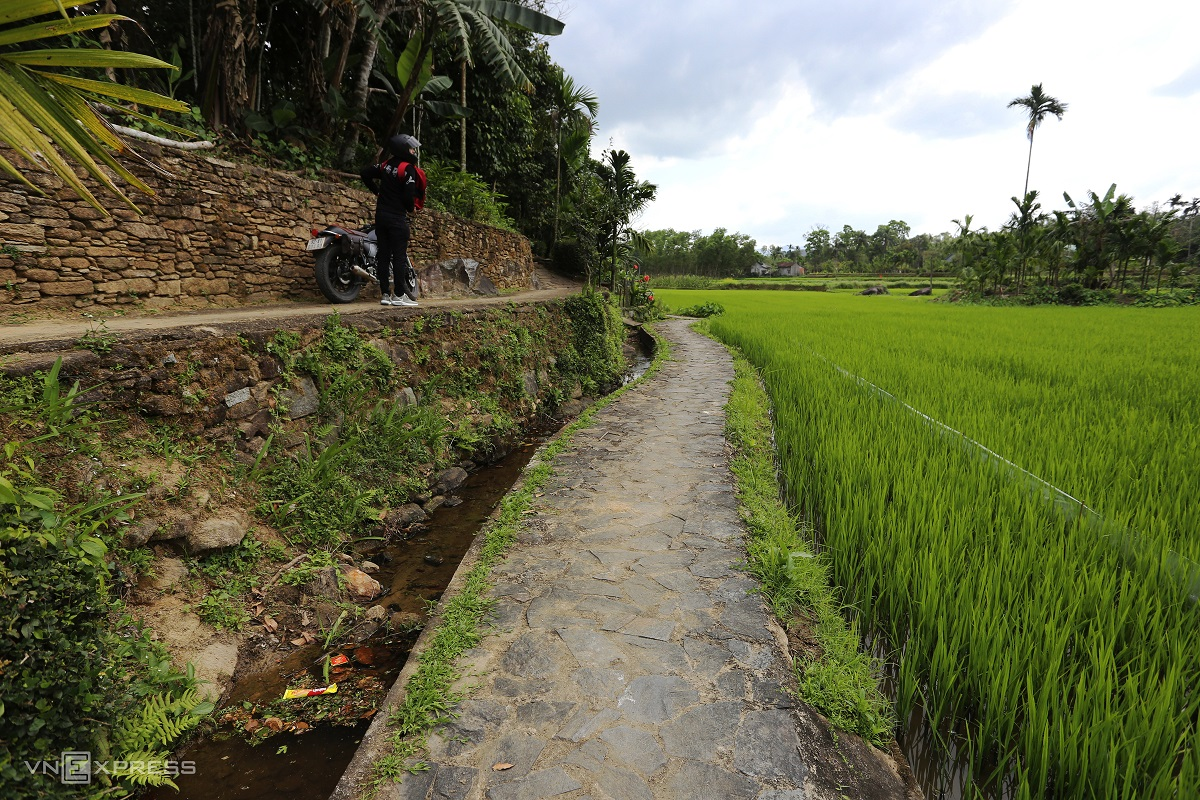 Stone footpaths skirting lush green paddy fields are ideal for a pleasure walk.