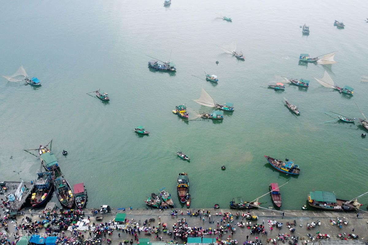 One week before the Tet (Lunar New Year) holiday, which peaks on Feb. 12, fishing vessels of various sizes return from Ha Tinh Province's fishing grounds to Cua Sot Port, Thach Kim Ward, Loc Ha District, each carrying a full load of fresh seafood. Fishermen will set out to sea thrice before commencing offshore leave for Tet. Since the beginning of February, around 40 boats enter Cua Sot Port each day holding an average 200 to 400 kilograms of catch [each?].