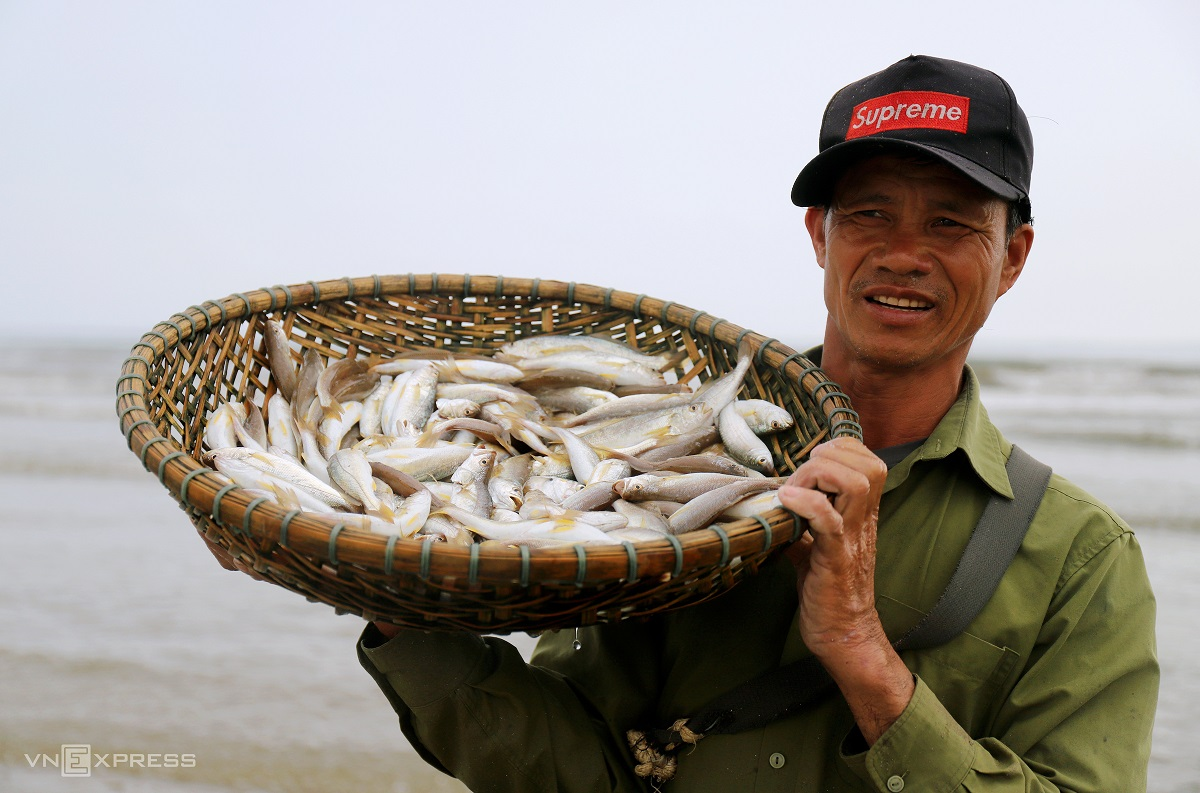 57-year-old Nguyen Minh Thoai from Loc Ha said: Croakers used to be abundant in the past but not anymore. Now we are struggling because of bottom trawling vessels. If lucky, I could earn VND1 million ($43) a day, or VND400,000 ($17) on average.