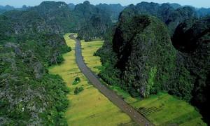 Vietnam among world's least sustainable travel destinations: Euromonitor