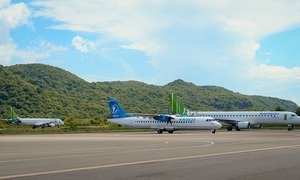 How strategy helped Bamboo Airways soar: CEO